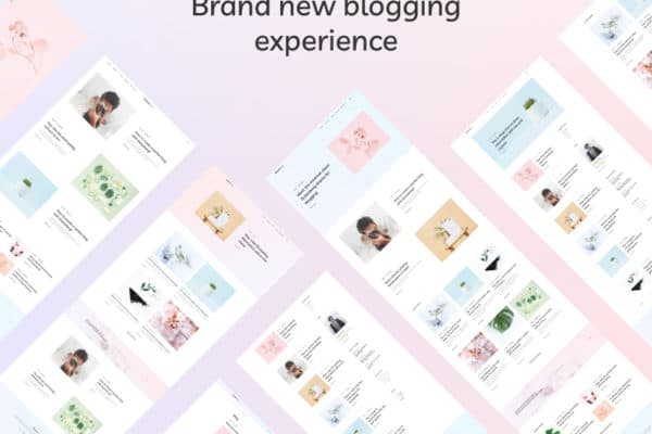 Best Premium Blog Themes