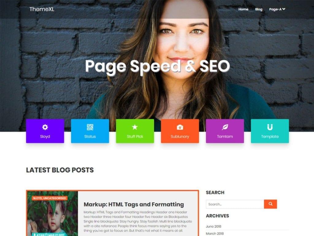 12 Best Free SEO WordPress Themes (Most Popular 2021)