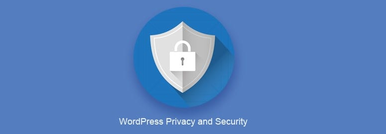Keeping Your WordPress Site's Privacy and Security In Check
