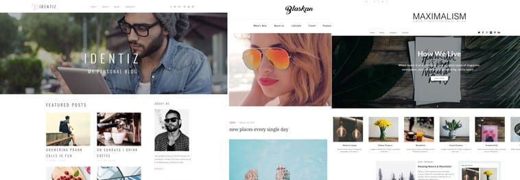 20+ Best Personal Blog WordPress Themes 2019