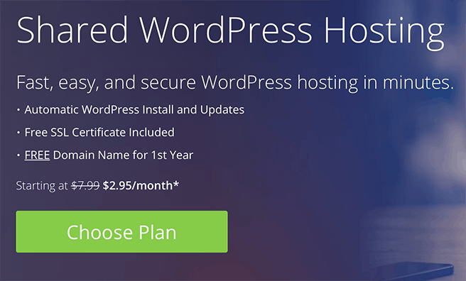 Bluehost spacial deal coupon plan