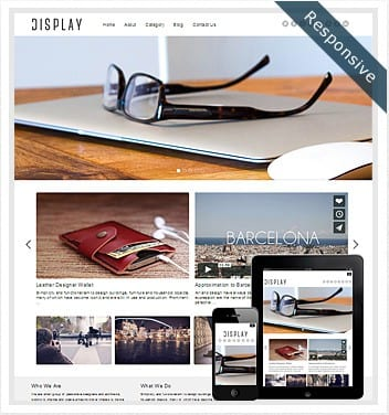 premium wordpress templates - display-theme-responsive
