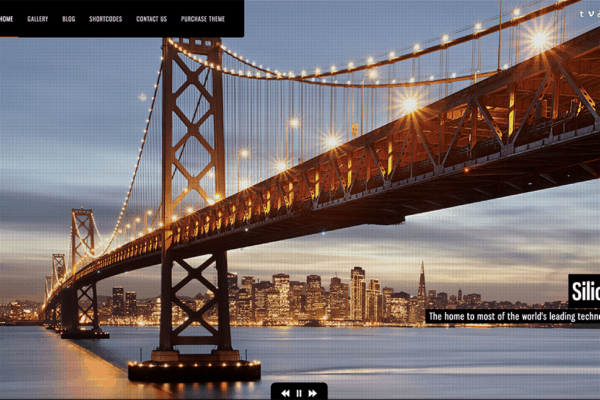 32+ Best Photography WordPress Themes – (UPDATED 2020)
