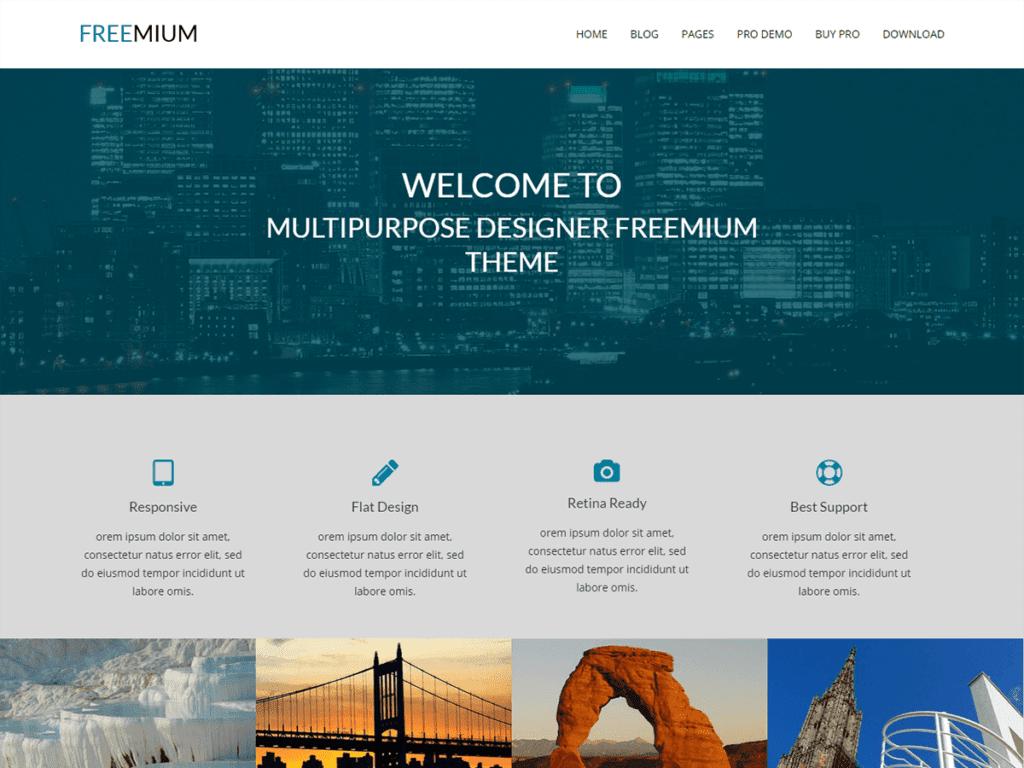 freemium theme