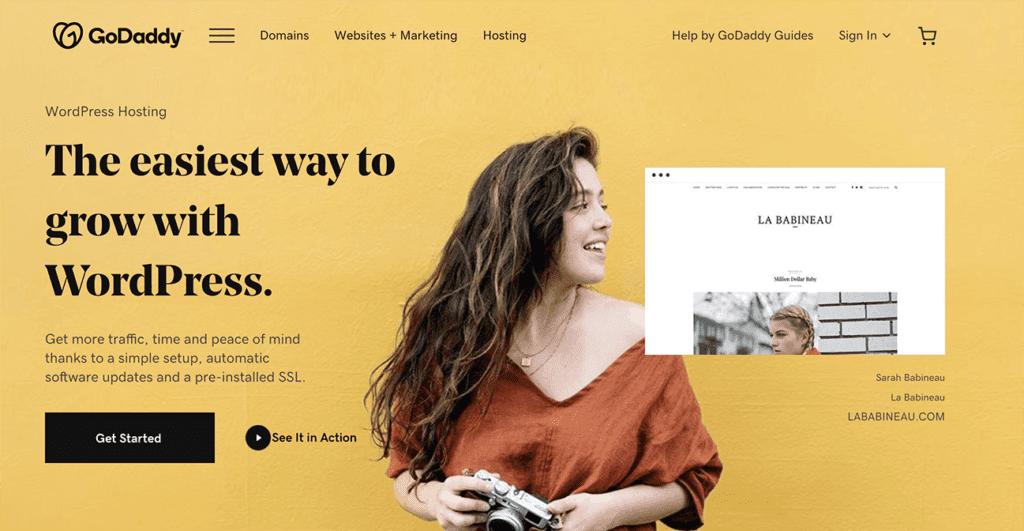 GoDaddy features hosting