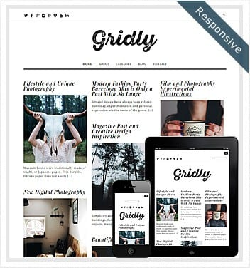 Gridly Layout WordPress Theme – Free