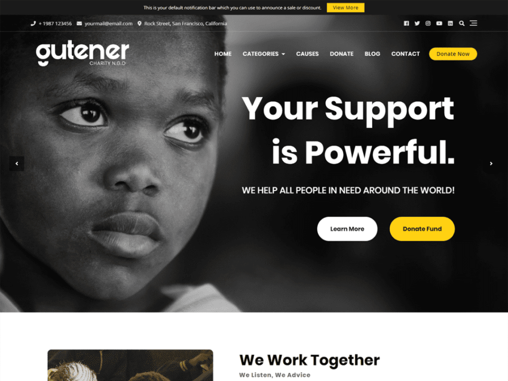19 Best Free Charity WordPress Themes (Non-Profit 2021)
