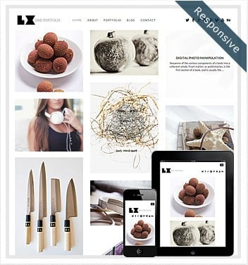 premium wordpress templates - large-grid-theme