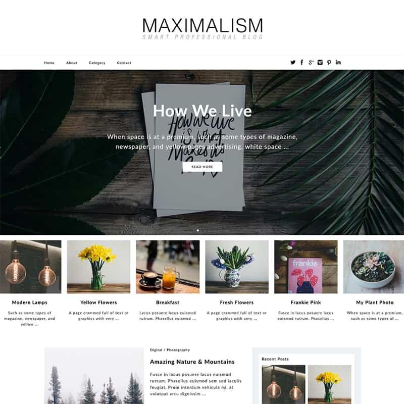 Maximalism - Eye-Pleasing WordPress Theme