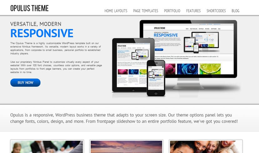 20 best free business themes wordpress 2018 dessign opulus accmission Images