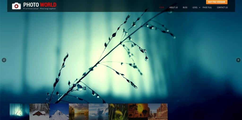 15 Top-Notch Free WordPress Themes for Photography Blogs and Portfolios