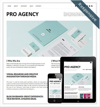 premium wordpress templates - pro-agency-theme