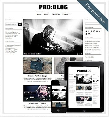 premium wordpress templates - pro-blog-theme-wordpress