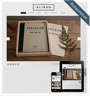 slider-wordpress-theme