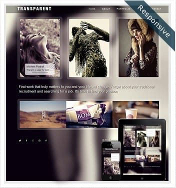premium wordpress templates - transparent-responsive-theme1