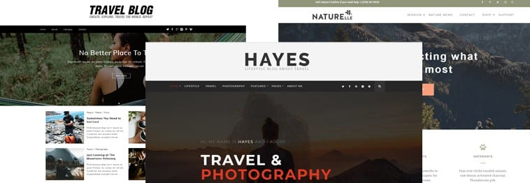 10+ Best Travel WordPress Blog Themes 2019