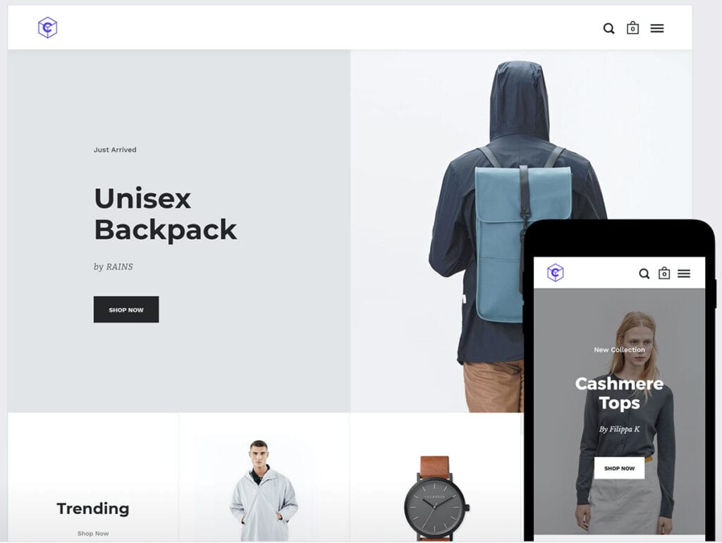 10+ Best Shopify Themes (Most Popular & Professional 2021)