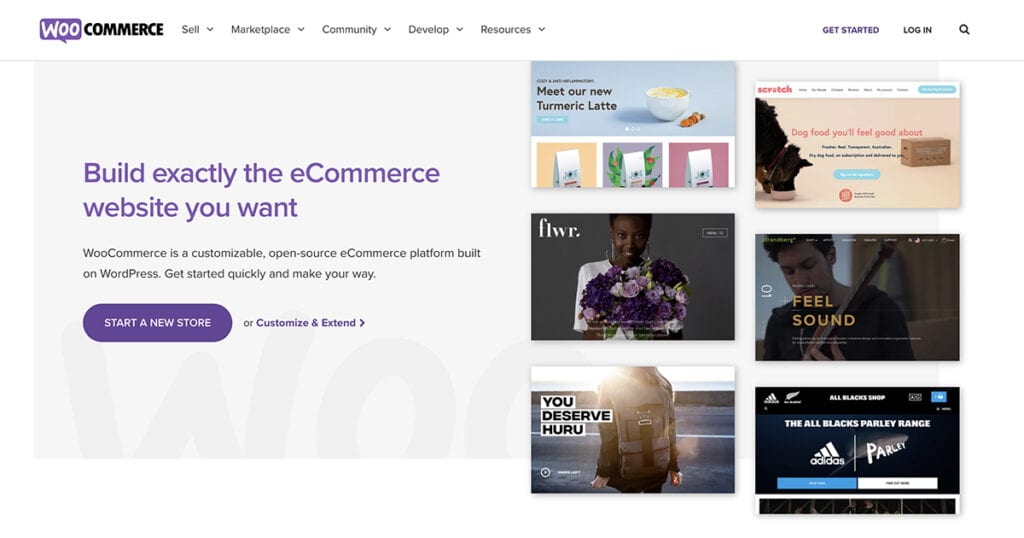 What is WooCommerce? (Best WooCommerce 101 for Beginners 2021)