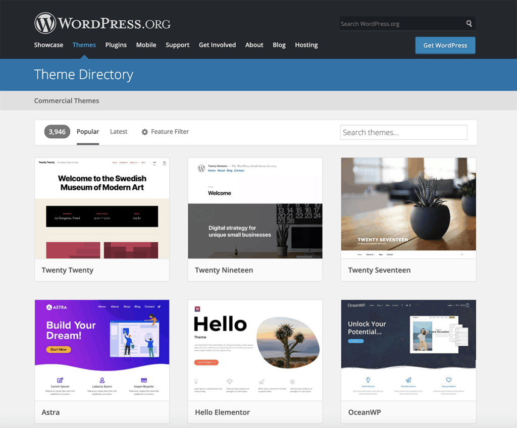 WordPress popular themes for website 2020