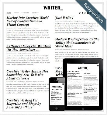 premium wordpress templates - writer-theme