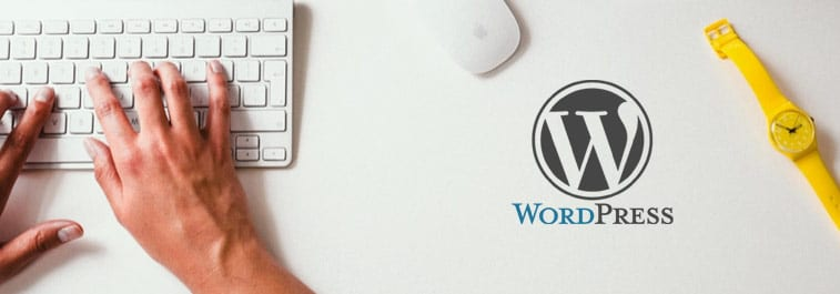 Top 13 WordPress Plugins for Writers 2019